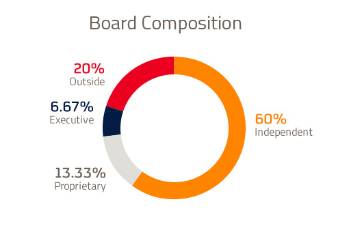 Repsol Board of Directors Composition