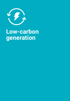 Low-carbon generation icon