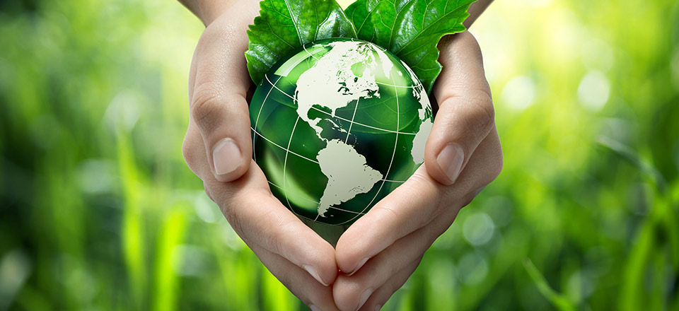 Two hands holding a green globe to illustrate environmental care