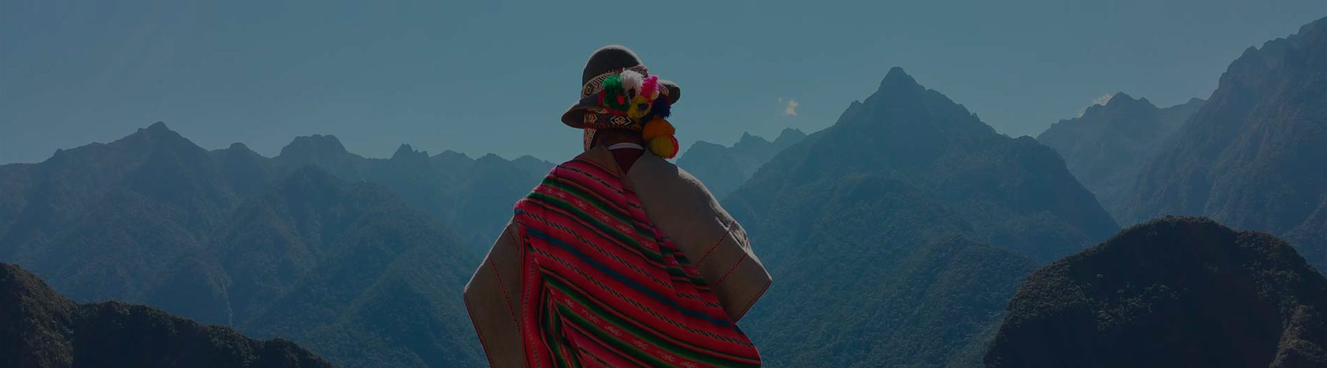 The back of an indigenous man looking at mountains