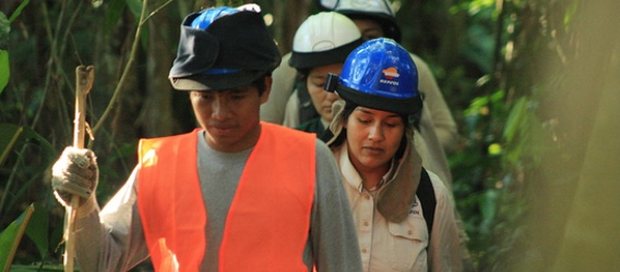Employees wearing a safety helmet and walking through the rainforest