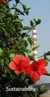 Closeup of red flower with smokestack in the background